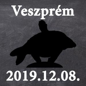 Workshop - Veszprém - 2019.12.08. 09:00 - Workshop - Veszprém - 2019.12.08. 09:00