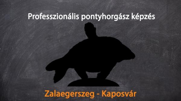 Zalaegerszeg - Kaposvár WORKSHOP