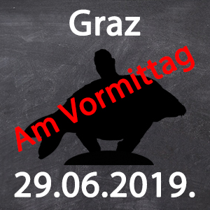Workshop - Graz - 29.06.2019. von 9:00 - Workshop - Graz - 29.06.2019. von 9:00
